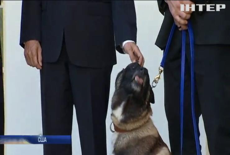 Дональд Трамп прийняв у Білому домі собаку-героя