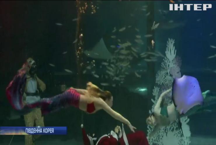 У Сеульському акваріумі підготували незвичайну програму до Різдва