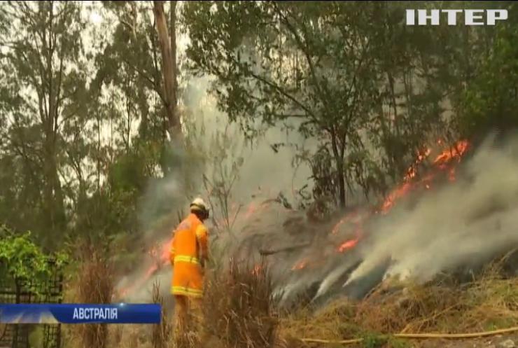 Рятувальники Австралії підпалами борються з лісовими пожежами