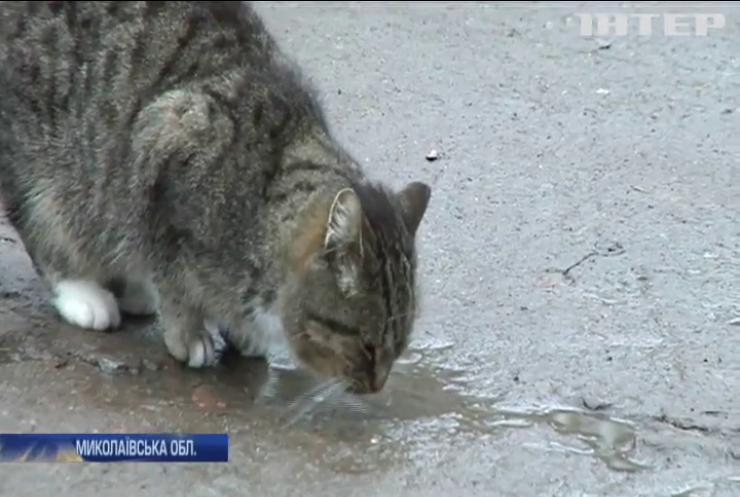 Жителі Миколаївщині можуть залишитися без водопостачання