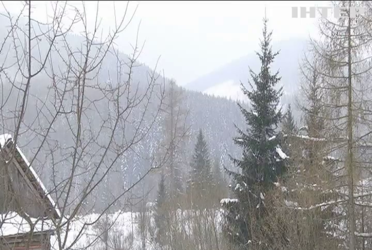 У Карпатах прогнозують мокрий сніг та сильний вітер