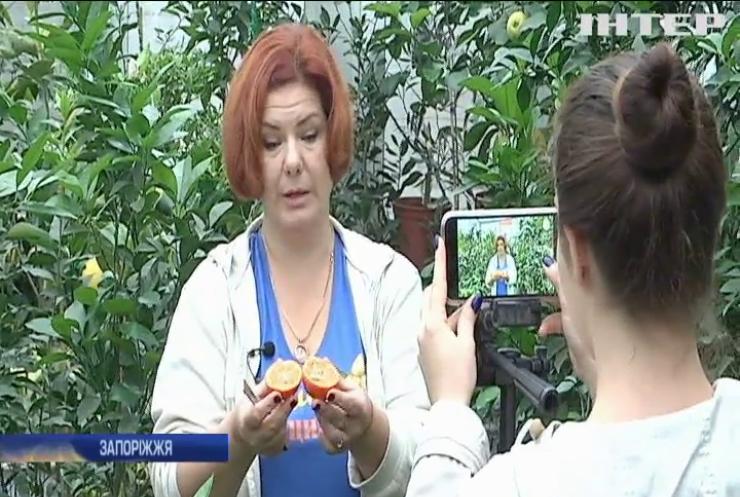 Жителька Запоріжжя виростила тропічний сад на власному подвір'ї