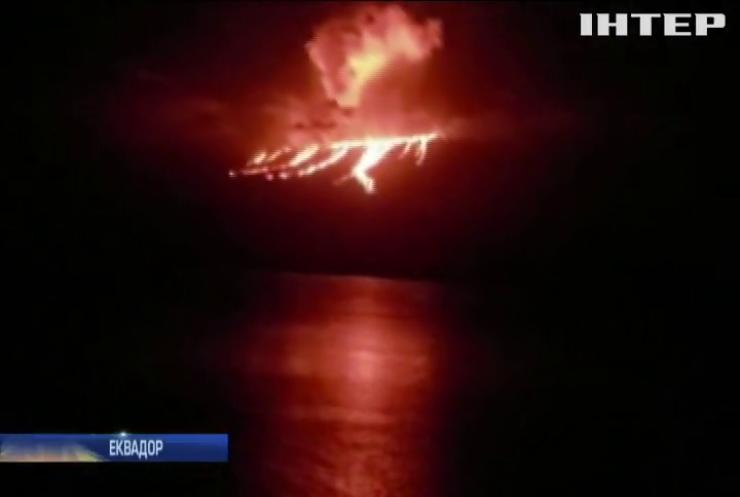 Вулкан на Галапагосах загрожує знищенням унікальним тваринам