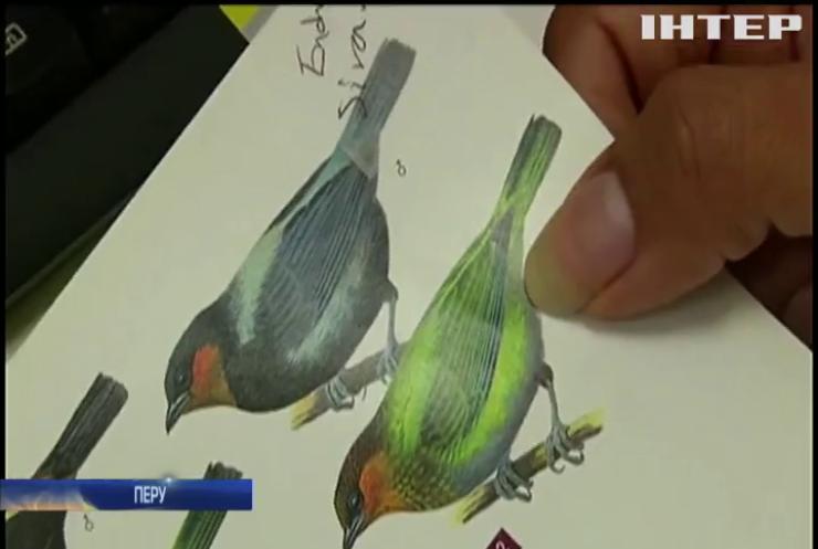 У Перу перехопили контрабанду рідкісних пташок