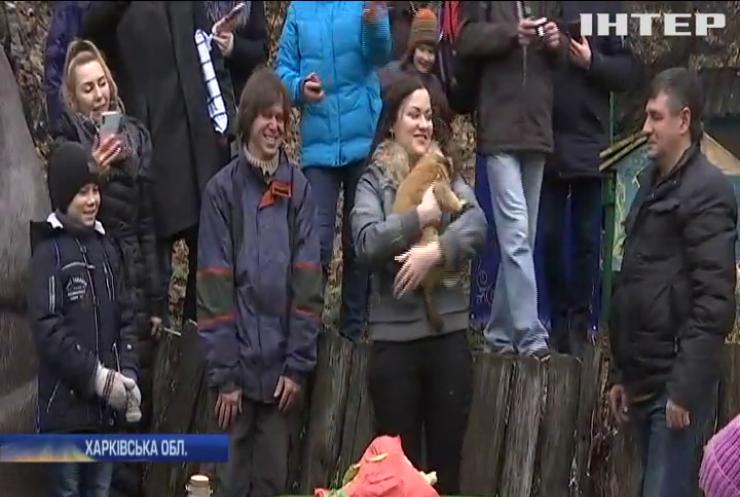 Головний пухнастий синоптик України дав прогноз на весну