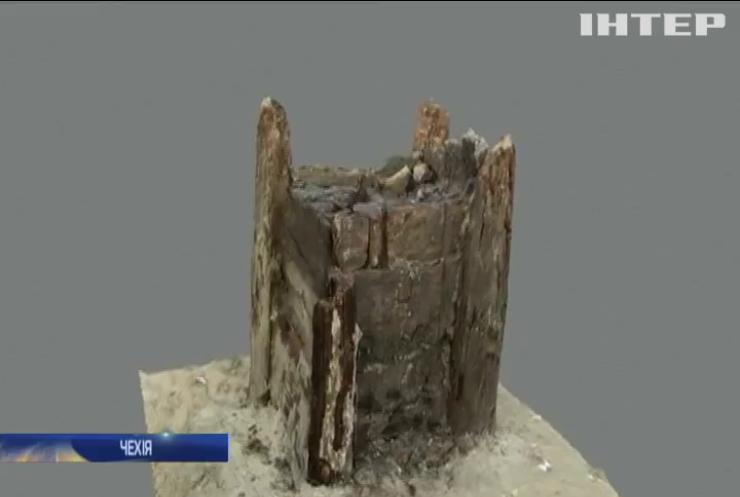 У Чехії виявили найстарішу дерев'яну споруду у світі