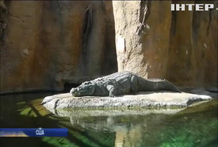 У зоопарку Техасу гості зможуть назвати тарганів та щурів іменами своїх колишніх