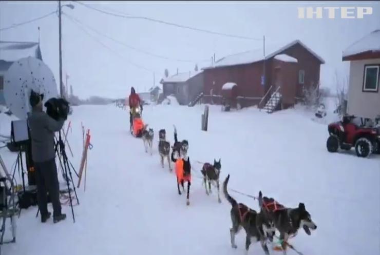 На Алясці завершилися легендарні перегони на собачих упряжках