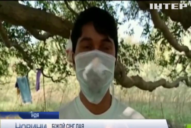 Пересидіти карантин: індійці самоізолюються на деревах