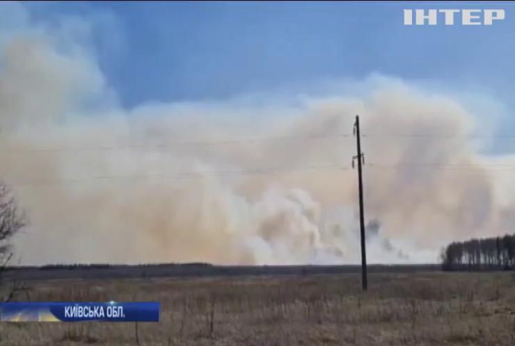 В зоні відчуження Чорнобильської АЕС горять ліси
