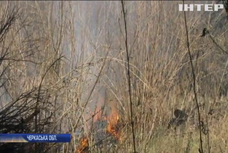 Черкащина у вогні: палії знищили 40 гектарів очерету та зелених насаджень