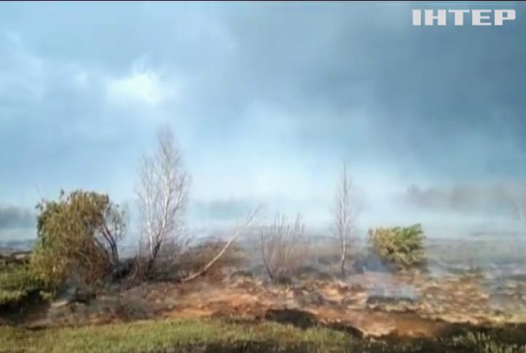 Україну накрило лісовими пожежами: 870 осередків за добу