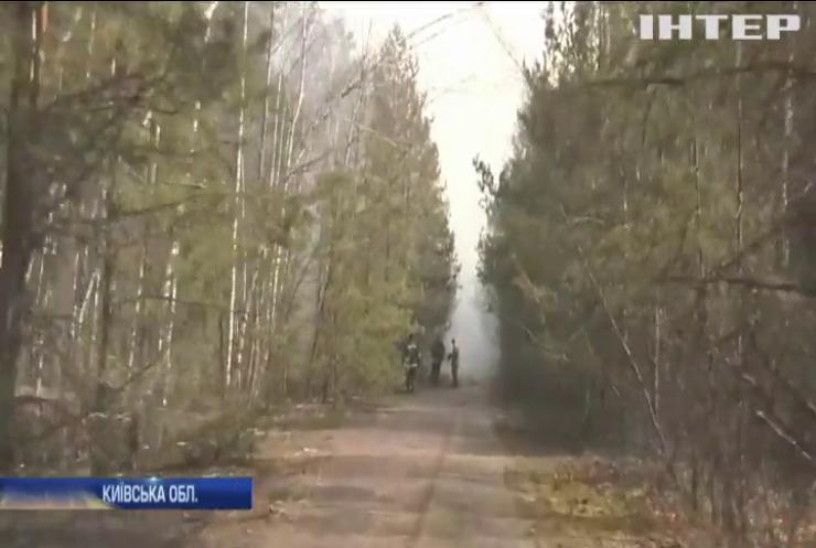 Біля Чорнобильської АЕС виявили два нових осередка пожежі