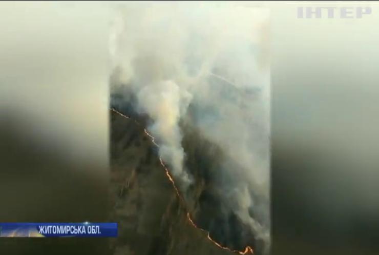 Масштабні пожежі в Україні: сотні рятувальників працюють цілодобово