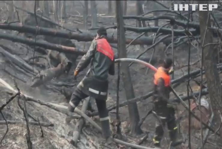 У Чорнобильській зоні не вщухають лісові пожежі