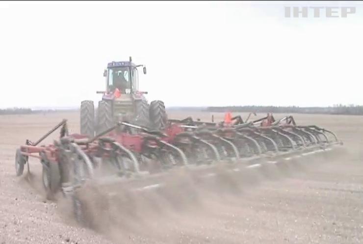 Мінекономіки знизило прогноз врожаю зернових в Україні