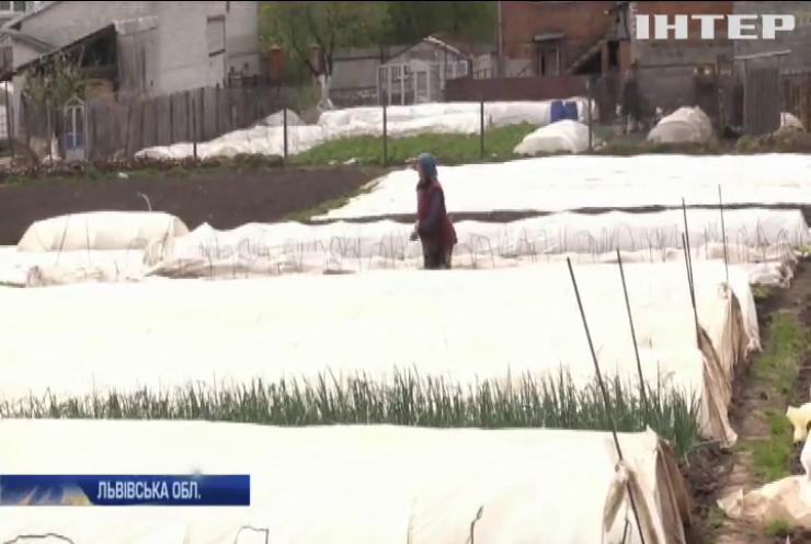 Продукти - на смітник: селяни Львівщини залишаються без засобів для існування