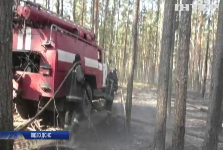 Житомирщина у вогні: українців закликають припинити палити траву