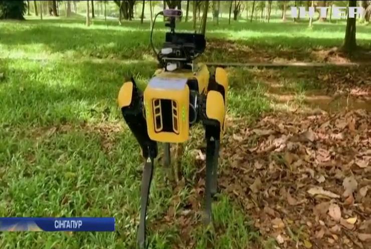 У Сінгапурі на боротьбу з COVID-19 вивели роботів