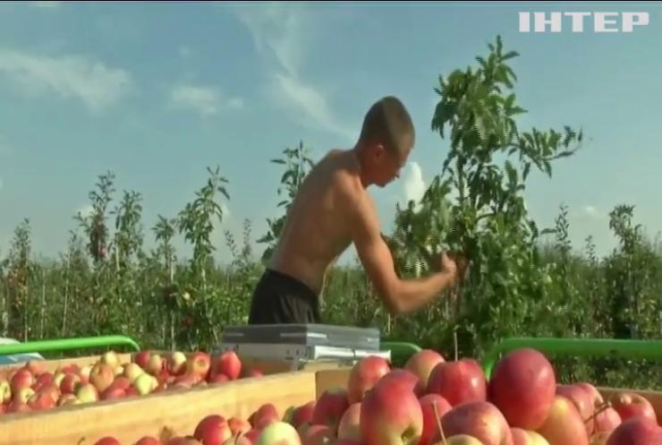 Польща послаблює карантинні вимоги для українських заробітчан
