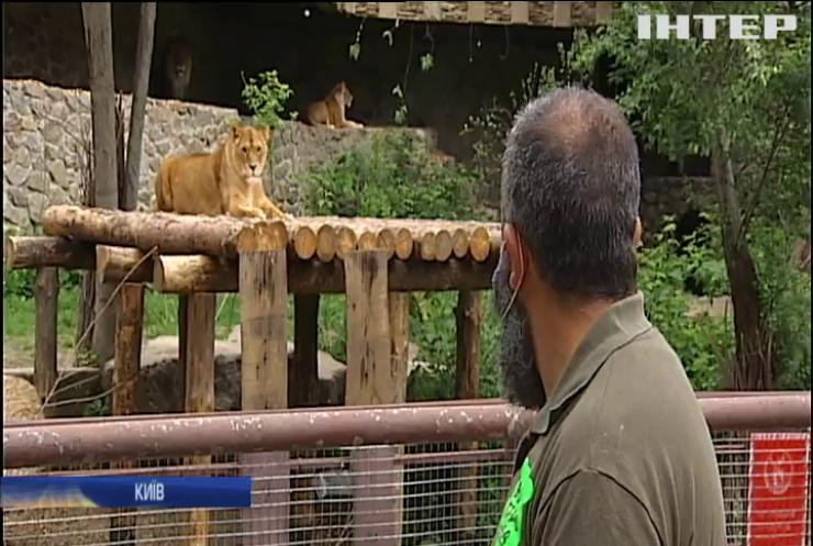 Київський зоопарк після реконструкції відкрили для відвідувачів