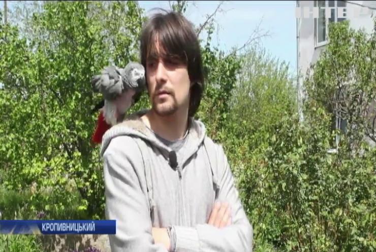 Житель Кропивницького облаштував вдома пташиний притулок