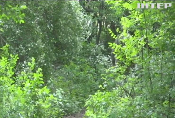Війна на Донбасі: на ворожій міні підірвався мирний житель