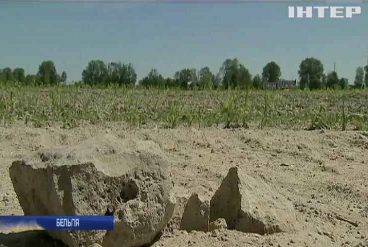 У Бельгії погодні негаразди зіпсували урожай фруктів-овочів