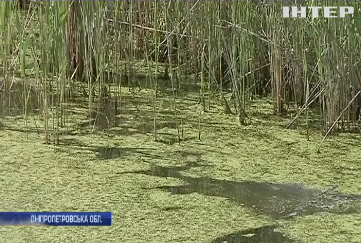 Річку на Дніпропетровщині можуть визнати зоною лиха