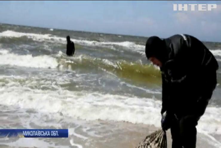 Пляшки, каміння та метал: в Очакові рятувальники вичистили пляж від сміття