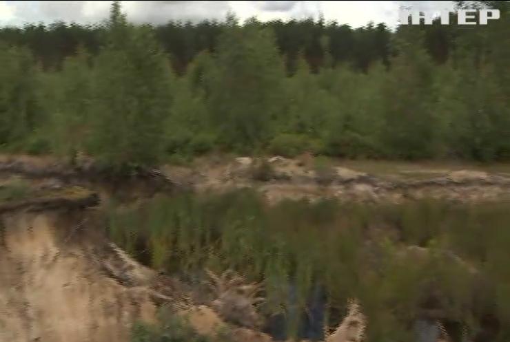 Закон про інвентаризацію: в Україні порахують ліси