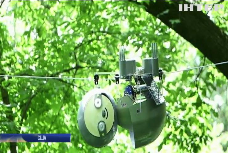 Робот-лінивець слідкуватиме за екологією лісів