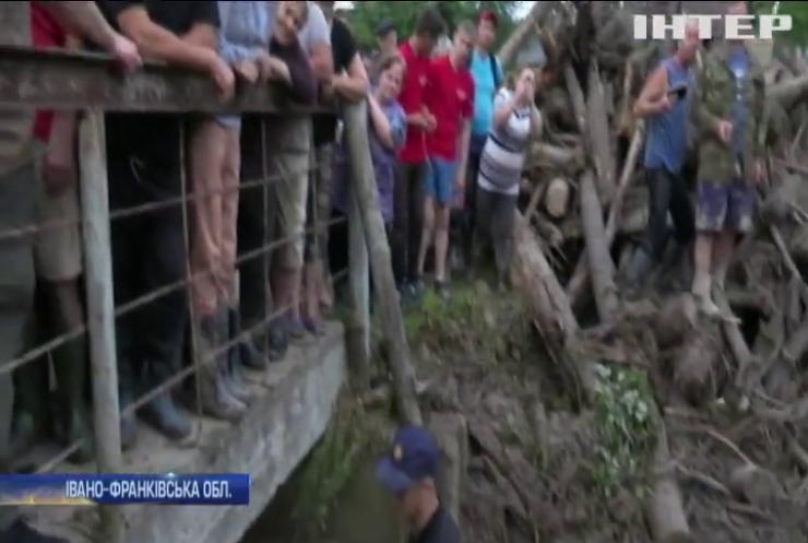 Прокуратура Івано-Франківської області розслідуватиме незаконне вирубування лісу