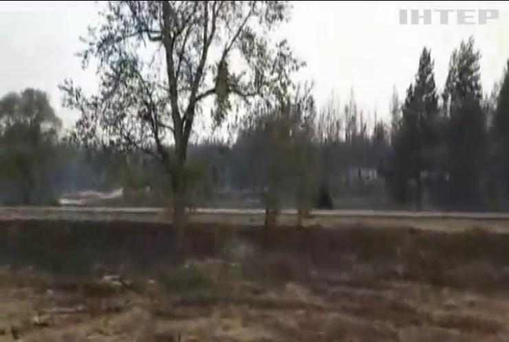 На Луганщині масштабна лісова пожежа забирає життя людей