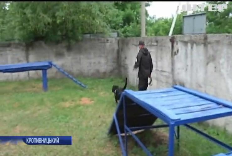 Як собаки допомагають кінологам-правоохоронцям розкривати злочини