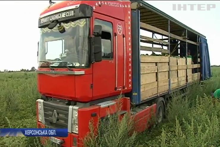 Кавуни не для всіх: чому в Україні дорожчають головні ласощі серпня?