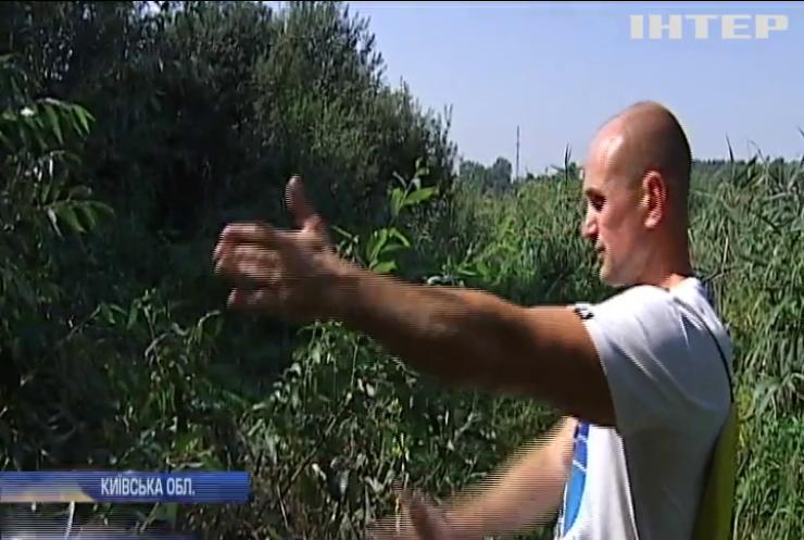 Вбивство екосистеми: чому в озері на Київщині масово гине риба