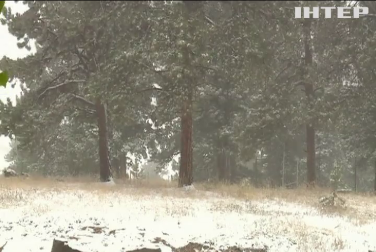 Центральну частину США замело снігом