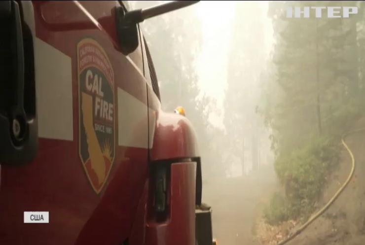 Від лісових пожеж у США загинули десятки людей