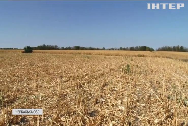 На Черкащині борються за врожай зі зброєю в руках