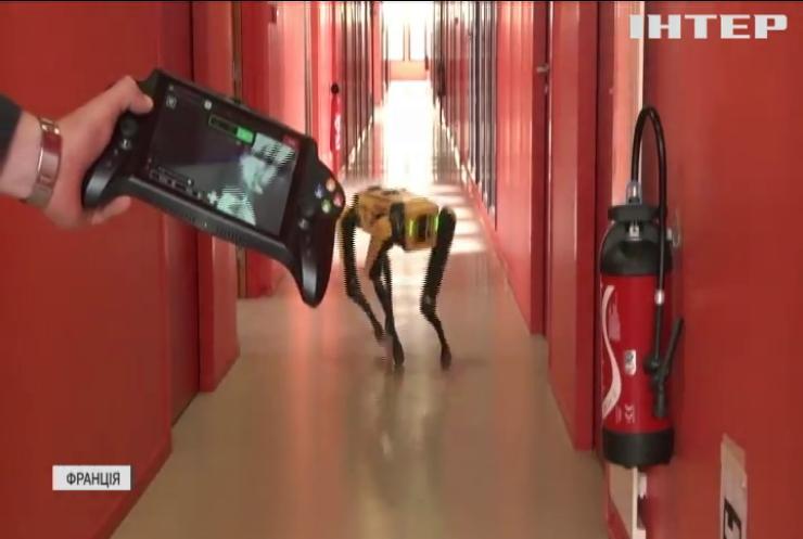 Собака-робот допомагатиме людям прокладати тунелі в горах