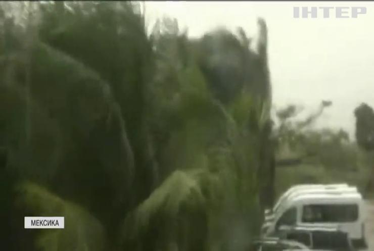 На Мексику налетів потужний ураган: вітер валив дерева й руйнував будинки