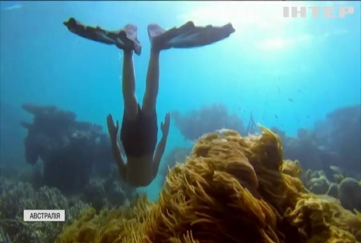 Потепління доводить корали Великого бар'єрного рифу до стресу