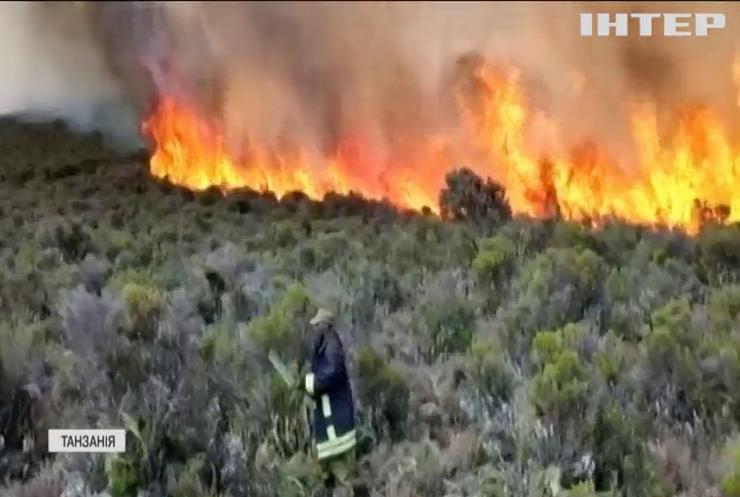 У Африці на горі Кіліманджаро не вщухає масштабна лісова пожежа
