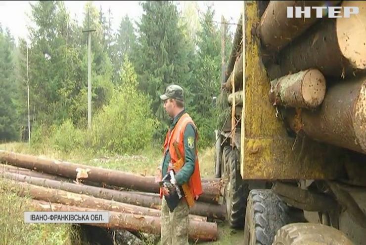 Гучне затримання директорів лісгоспів: чи будуть покарані прикарпатські корупціонери