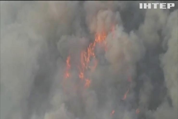 У Каліфорнії через пожежу евакуювали понад 100 тисяч людей
