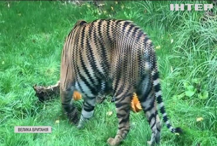 Мешканці Лондонського зоопарку почали відзначати Хелловін