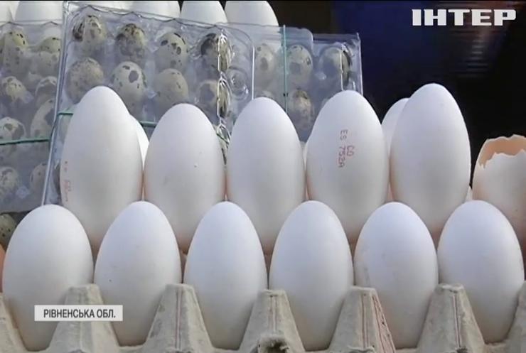 Золоті яйця: чому ціна на популярний продукт летить вгору?