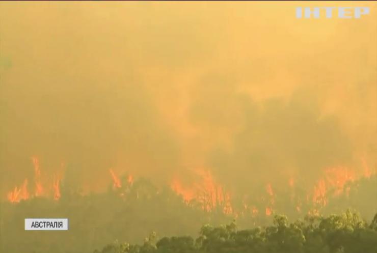 Австралію випалює нечуваною спекою