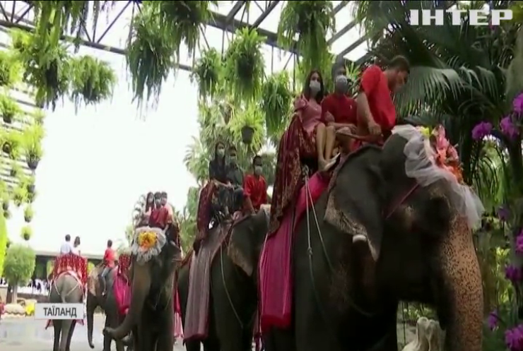 У Таїланді влаштували масове весілля на слонах
